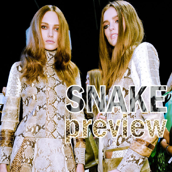We Fashion Trends-fashion-beauty-blog-trends-snake-print-snake-preview
