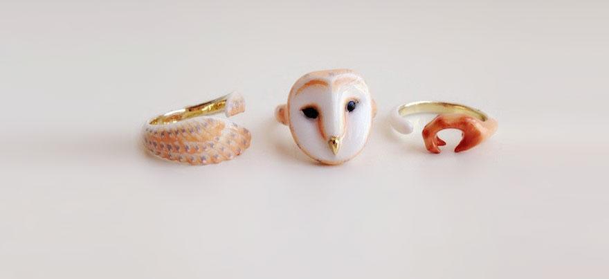 anel coruja